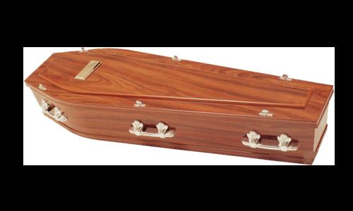 Single Raised Lid Coffin