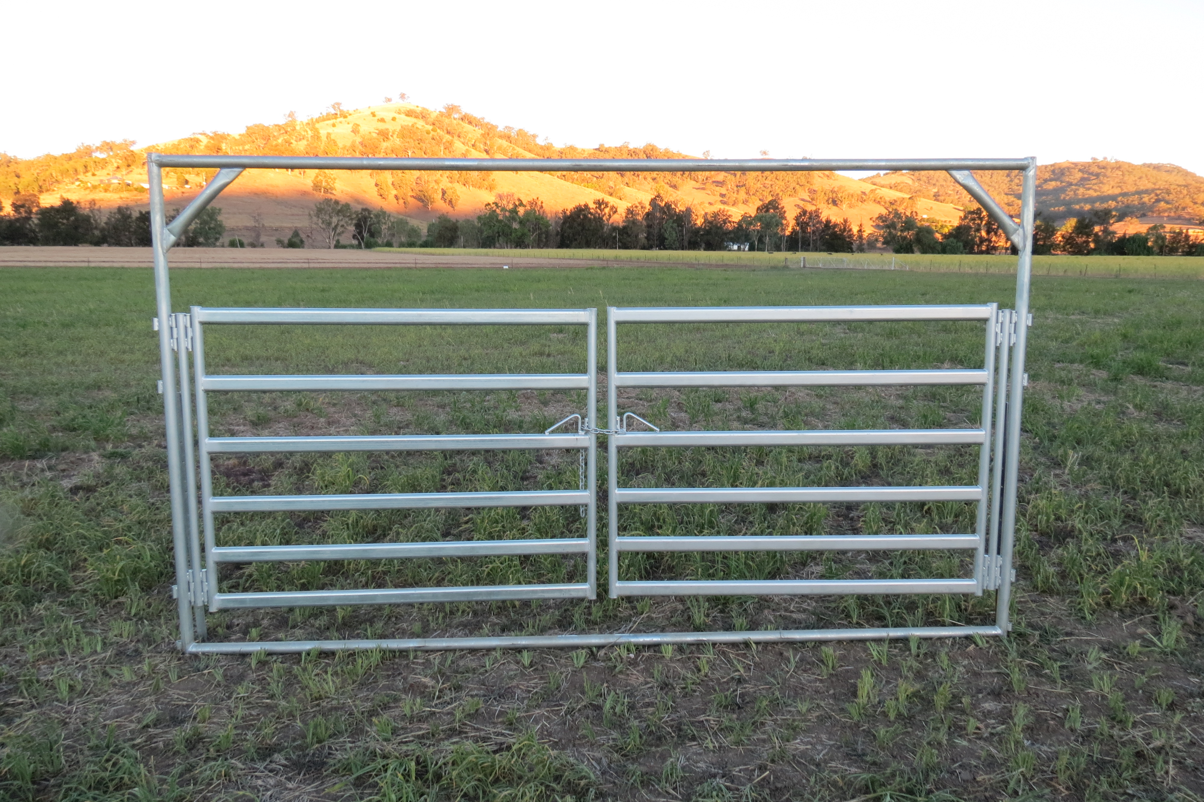 Premium Heavy Duty Cattle Double Gate