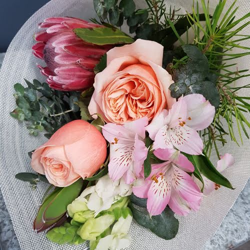 A Florist Choice Daily Posy